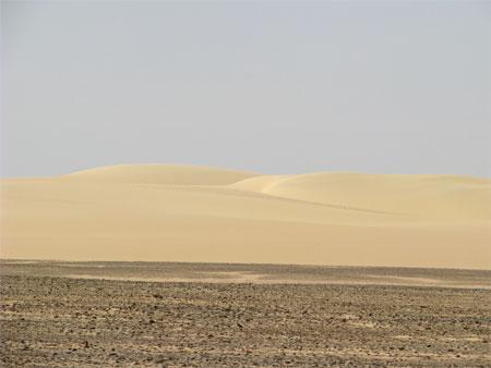 遠くに見える砂丘。